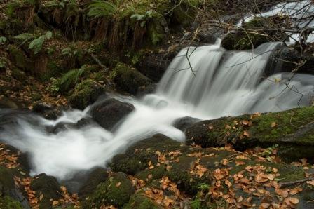 Río Barjas